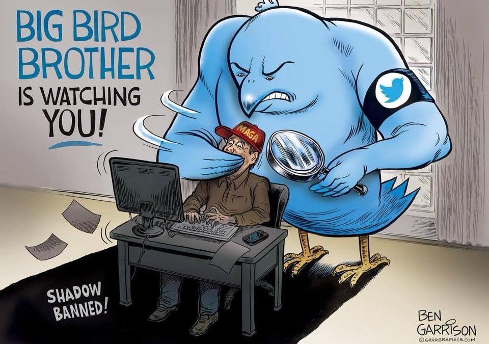 Twitter Remove Opções de Privacidade do Usuário