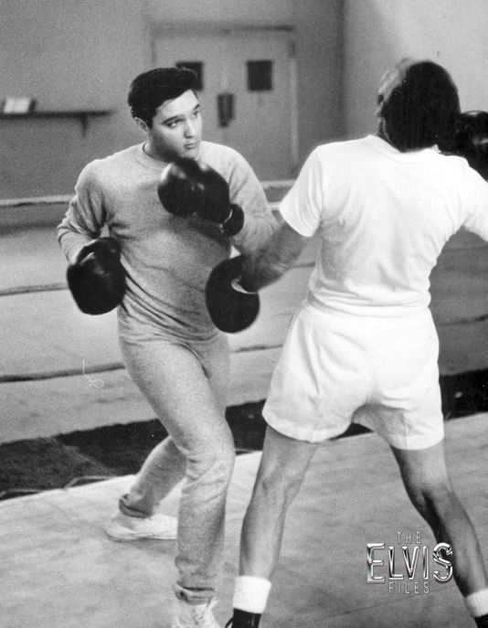 Image result for Elvis Presley, kid galahad fight training