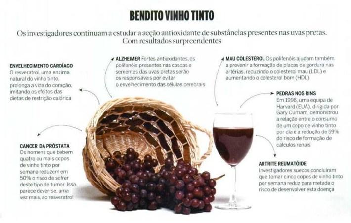bendito-vinho-tinto-summer-garden