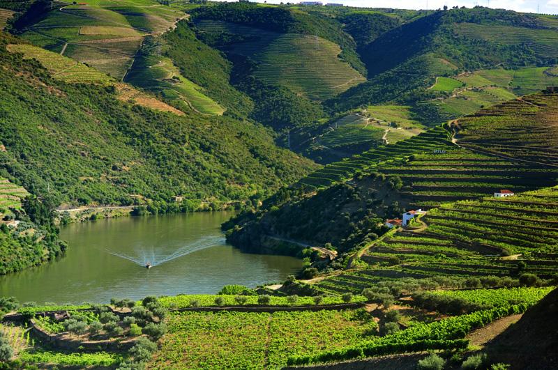 Caracterização da Região Demarcada do Douro
