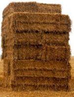 Feno Odor vegetal que recorda o da erva cortada, devido aos compostos carbonilados. Tem como base a cumarina, derivado do ácido cinâmico. É próprio dos vinhos tintos muito evoluídos.