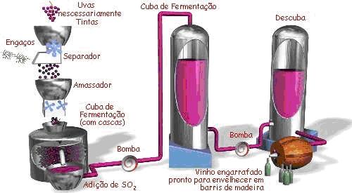 fluxograma processo vinho tinto
