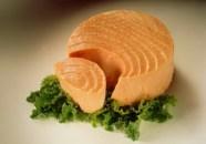 peixes gordos2
