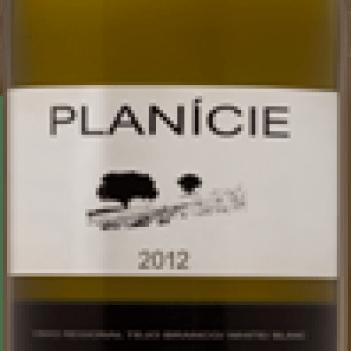PLANÍCIE Regional Tejo Branco 2013