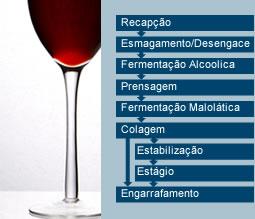 vinificacaoTinto