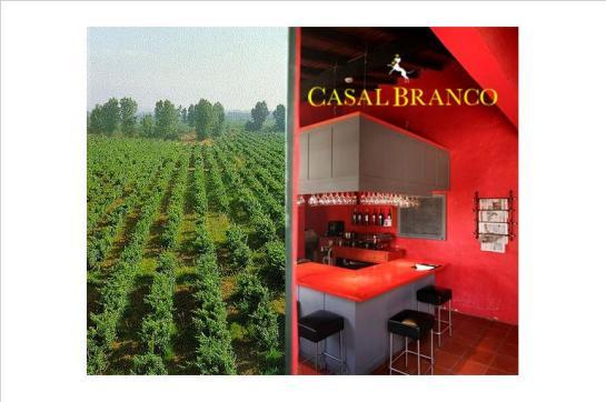 Casal Branco EN 118 2080-362 Benfica do Ribatejo-Almeirim Tel: 243 592 412; Fax: 243 593 078;   www.casalbranco.com