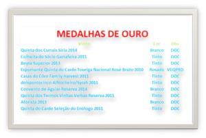 MEDALHAS DE OURO BI