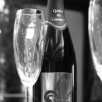 Espumante Quinta do Convento de Nossa Senhora da Visitação Pinot Noir Blanc de Noir3