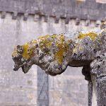 Mosteiro de Alcobaça9