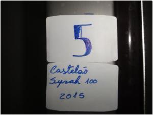 Castelão Syrah