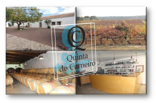 QUINTA DO CARNEIRO Triana - Camarnal 2580-376  Alenquer - Portugal Tel.: (+351) 263 711 372 Fax: (+351) 263 711 372