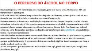 1 - O PERCURSO DO ÁLCOOL NO CORPO