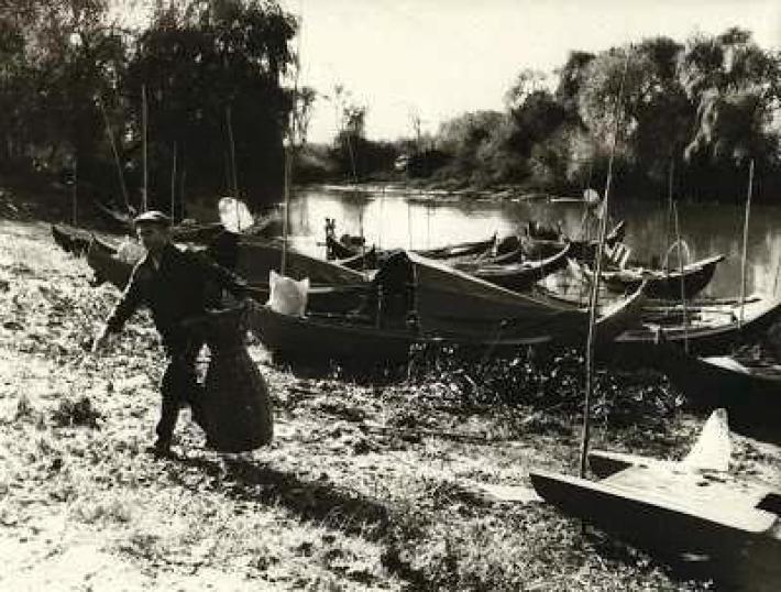 """Os barcos dos Ílhavos... """"...sempre com pé no barco, pé na terra"""""""