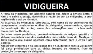 7 - VIDIGUEIRA