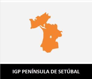 IGP PENÍNSULA DE SETÚBAL