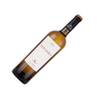 vidigueira-branco-2014