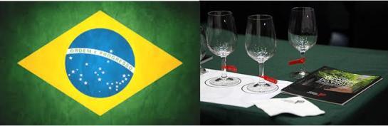 MERCADO: Continua a ser um dos principais mercados para os vinhos portugueses, pois tem vindo a apresentar uma elevada taxa de crescimento das exportações, próxima dos 19%, traduzindo um crescimento de 20 para 24 milhões de 2010 e 2011.  Os vinhos portugueses conseguiram um posicionamento alto no mercado brasileiro e Portugal está no grupo dos cinco fornecedores de vinho do Brasil. Além disso, o vinho português tem um preço médio alto e uma elevada conotação positiva neste mercado. É o segundo mercado de promoção dos vinhos portugueses após os EUA.