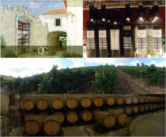 Quinta da Cortezia 2580-101 Aldeia Gavinha - Alenquer Portugal Tel. (+351) 263 769 238 Fax (+351) 263 760 334