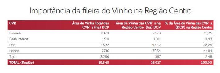 importancia-da-fileira-do-vinho-na-regiao-centro