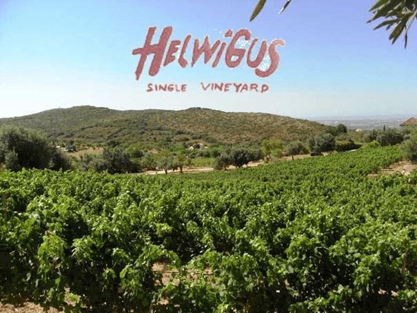 Helwigus