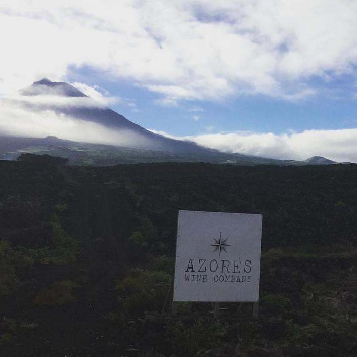 azores-wine-company-4