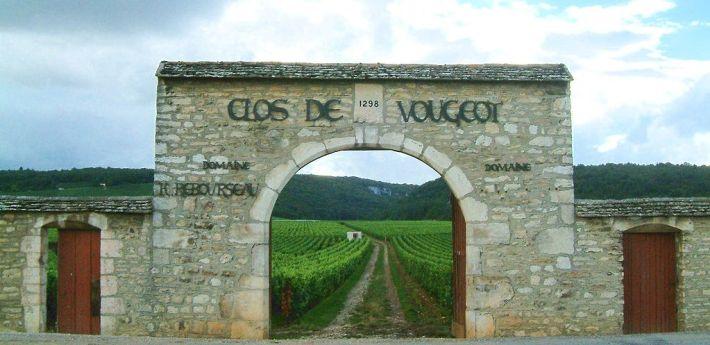 clos-vougeot-2