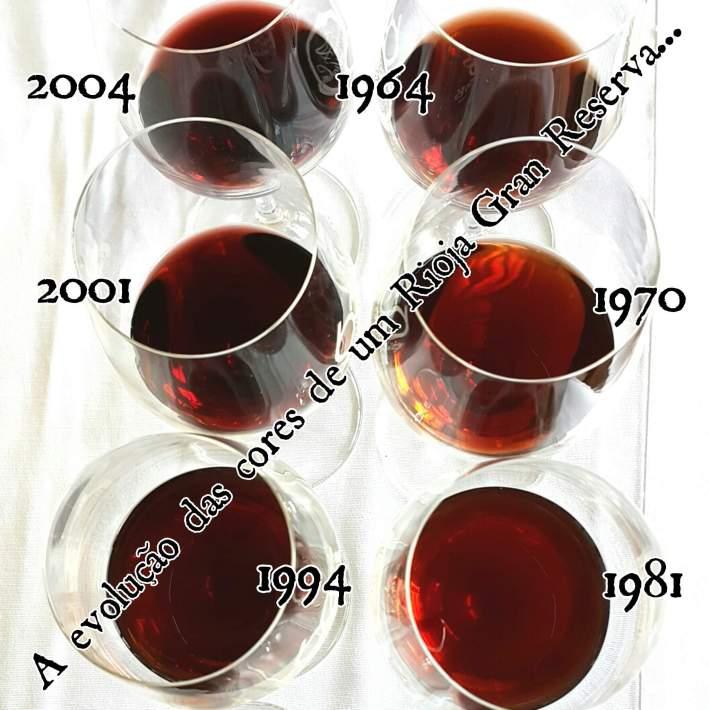 Evolução do Rioja