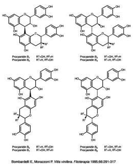 proantocianidinas