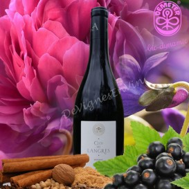©De Vignes En Vin