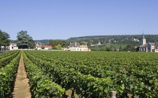 Viajando pelo Mundo dos Vinhos Franceses – Região da Borgonha, parte 4, Sub-Região de Côte de Chalonnaise