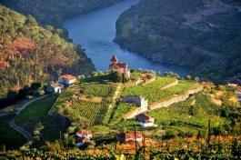 alto-douro-vinhateiro-patrimonio-mundial-19