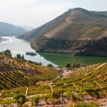 alto-douro-vinhateiro-patrimonio-mundial-5
