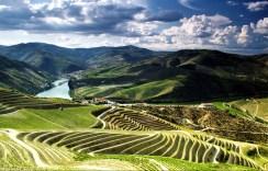 alto-douro-vinhateiro-patrimonio-mundial-8