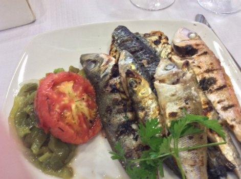 mixed-fish