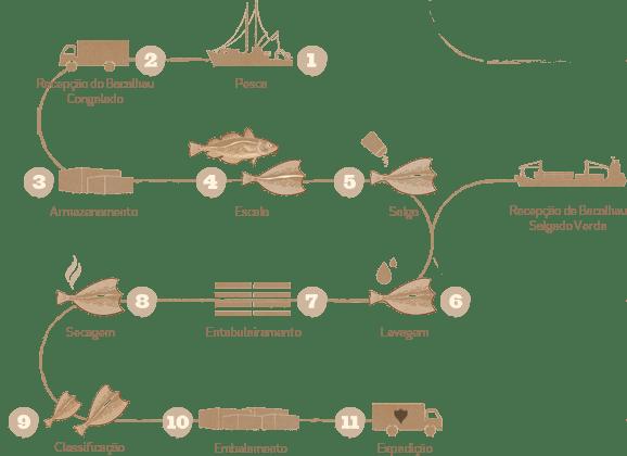 Infografia do Processo