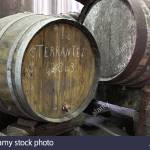 barrel-of-terrantez-madeira-wine-maturing-in-the-cellars-of-henriques-AXYX2E