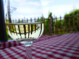 picnic-wine