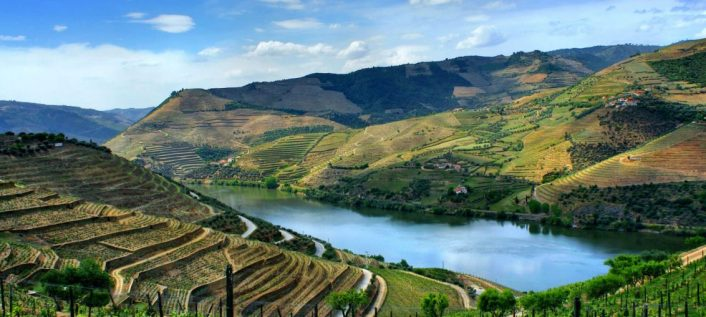 douro-tgv-promove-aceleração-no-turismo-gastronomia-e-vinho-1132x509