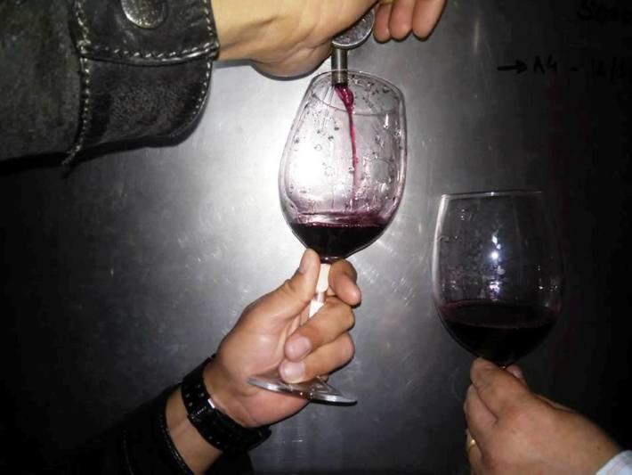 Syrah no copo; Herdade dos Pimenteis