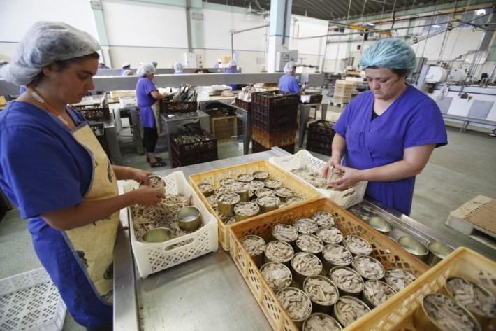 Na Fábrica de Santa Catarina, Ilha de S. Jorge - Açores