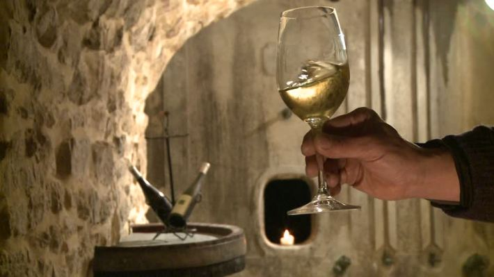 399160096-swirling-glas-wine-tasting-wine-cellar-white-wine
