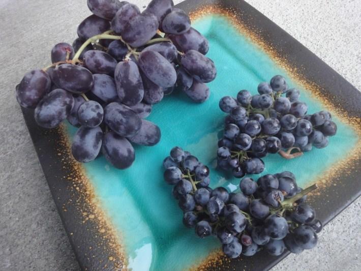 Lado esquerdo uvas de mesa lado direito uvas para vinho