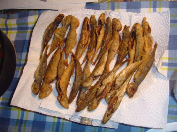 carapaus fritos