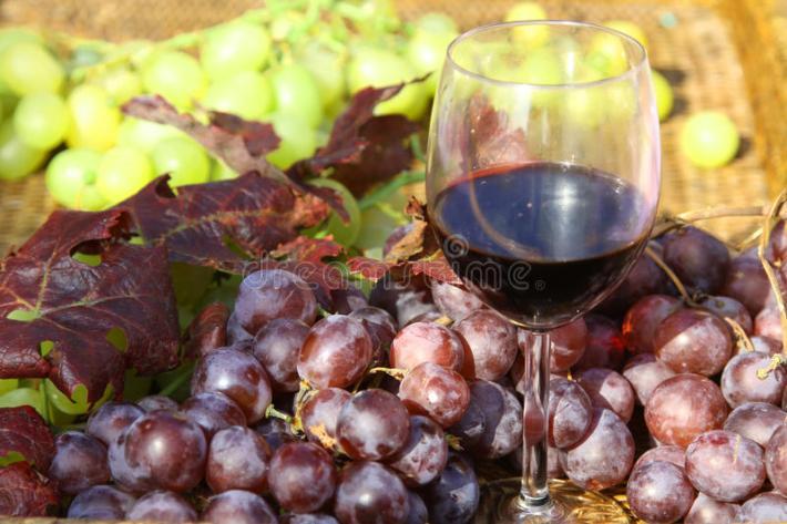 Diferenças entre aromas de frutos vermelhos e pretos no vinho