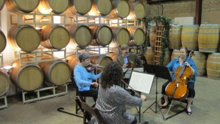 Relação harmoniosa entre vinhos e música clássica 11