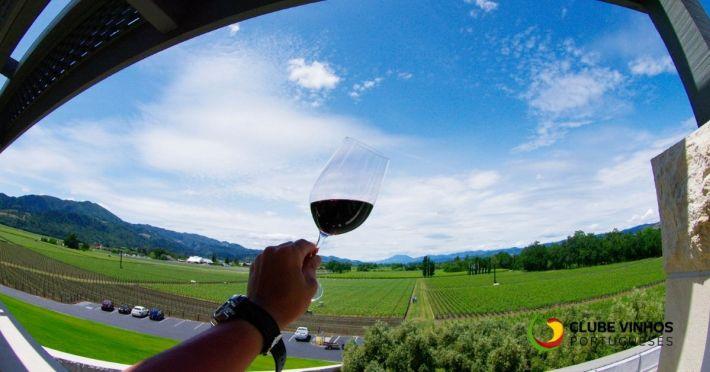 enoturismo-vinho