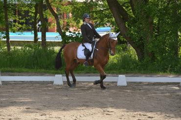 dressage centre equestre