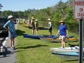 Okefenokee Swamp (Okefenokee Swamp) Report - Florida Sea ...
