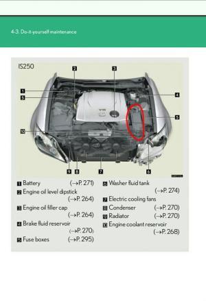 2008 Lexus Is250 Fuse Box 2008 Nissan Pathfinder Fuse Box Wiring Diagram ~ ODICIS