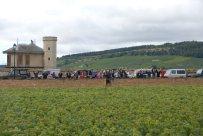 Bourgogne-2013-64
